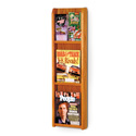 3 Pocket Magazine / 6 Pocket Brochure Wall Display with Dividers